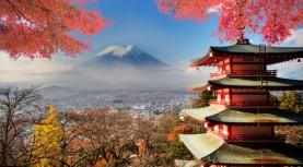 Asiana Airlines Economy Class nach Tokio